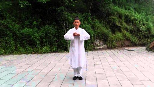 Qigong des 12 brocades (Guan Yongxing)